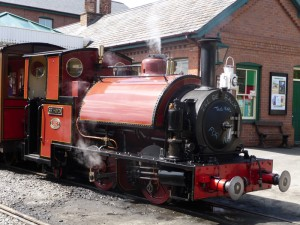 No 3 Sir Haydn last day 2