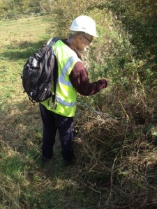 Ecology survey underway Oct 2014 at GCR (c) Lili Tabiner